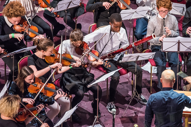 Part of the HYOT orchestra, with students playing violin, bassoon and oboe. Their conductor is standing facing away from us and towards the orchestra at the front.